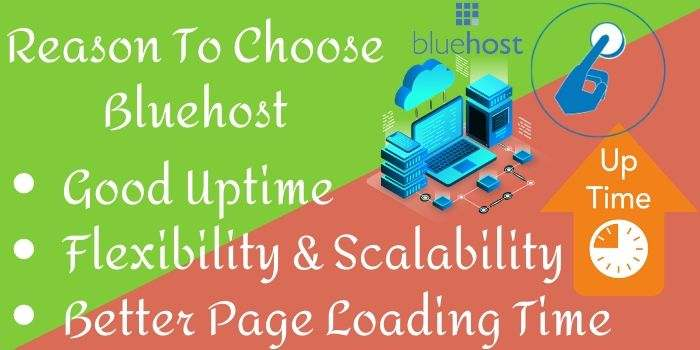 Reasons To Choose Bluehost