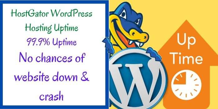 Hostgator WordPress Uptime